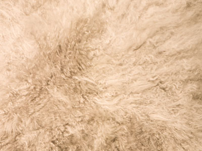 Cashmere Goat Skin color swatch wheat