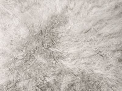 Cashmere Goat Skin color swatch silver