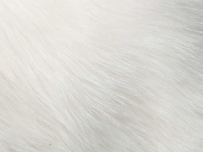 Goatskin Cushions color swatch natural white