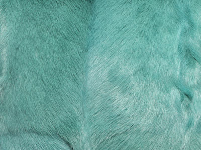 Goatskin Cushions color swatch green