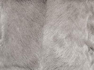Goatskin Cushions color swatch Grey