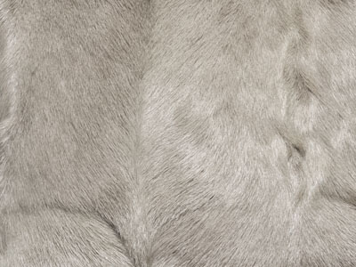 Goat Skin Hide color swatch silver