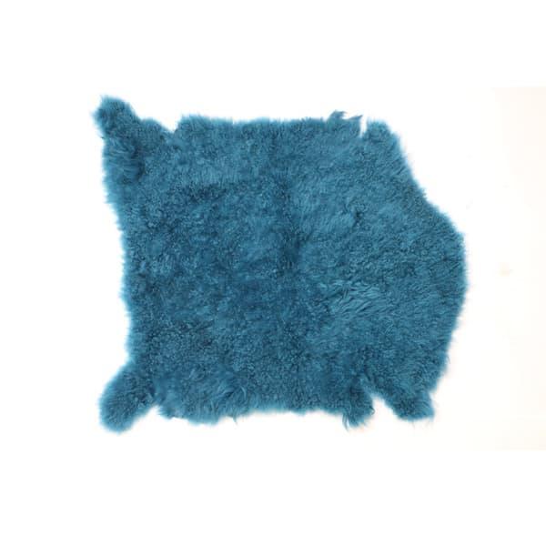 blue Cashmere Goat Shearing