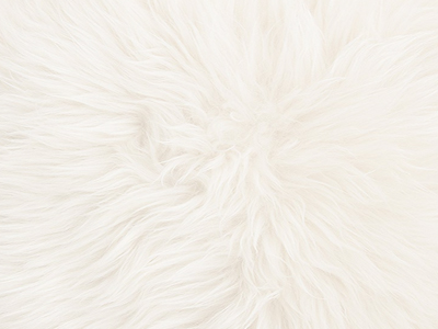Australian Sheepskin pillow cover color swatch natural white