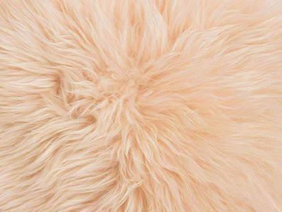 Australian Sheepskin pillow cover color swatch beige