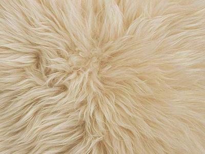 Australian sheepskin Fur Chair Pad color swatch beige