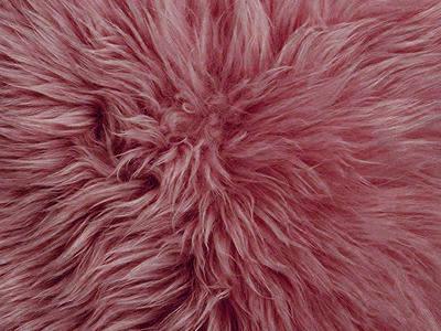 Australian Sheepskin pillow cover color swatch wine